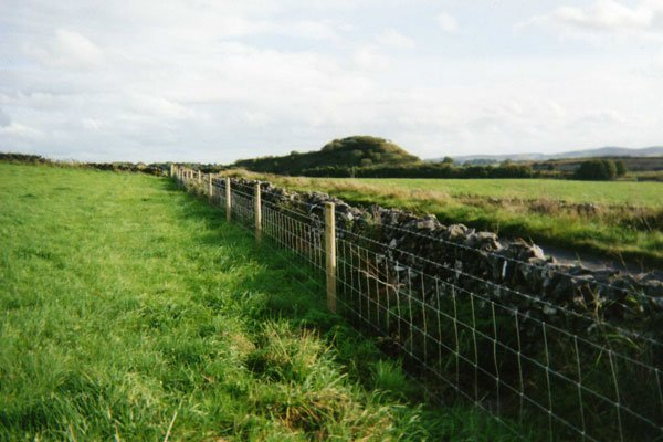 Fencing Agricultural Take A Fence